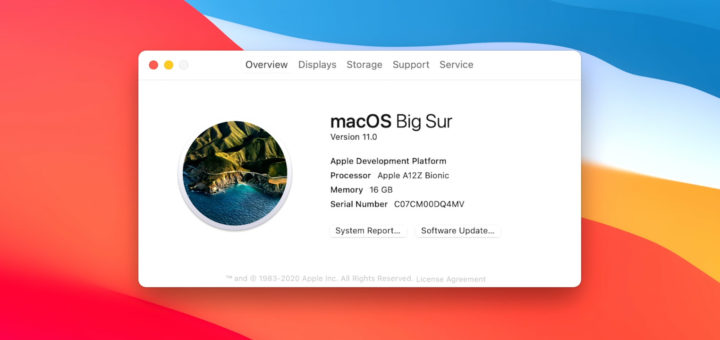 Apple macOS Big Sur Apple Silicon